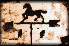 caballo-picture
